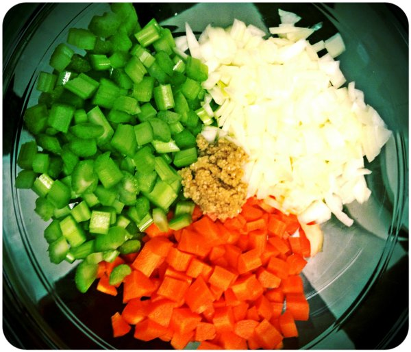 celery garlic carrots and onion